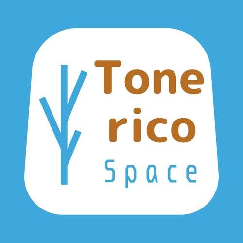 Tonerico Space
