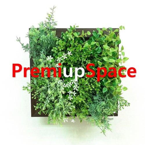 PremiupSpace