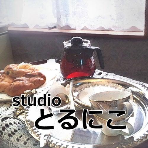 studioとるにこ