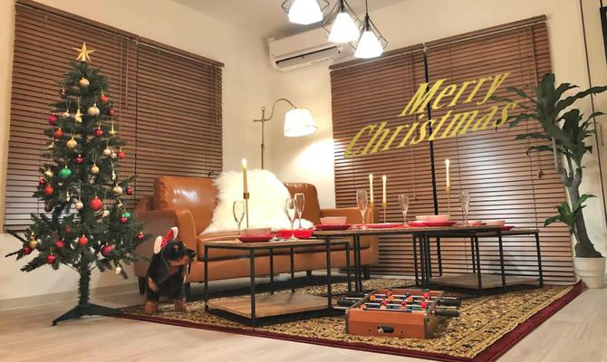 【千葉県 柏駅】NEW OPEN落ち着いたクリスマスムードが楽しめるスペース