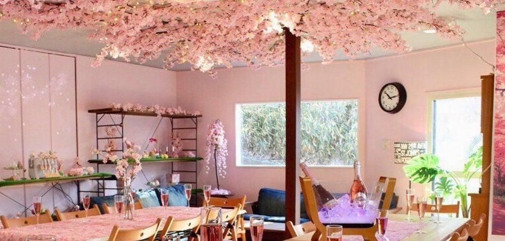 春のインドア花見特集 室内で快適お花見パーティーを楽しみませんか?