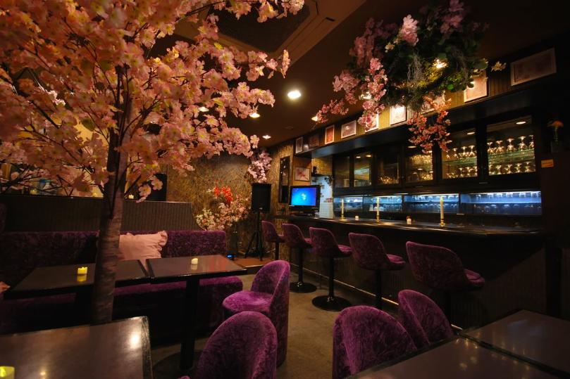 本格スナックスペースに満開の桜!